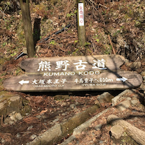 熊野古道と温泉三昧 その1 中辺路の記事に添付されている画像
