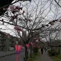 明日はさが桜マラソン@臭い!の記事に添付されている画像