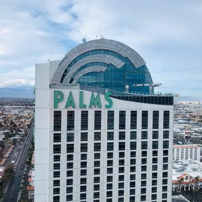 1年前にブログ名を変更したPALMS(パームス)♪の記事に添付されている画像