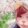大宮アロマフルール☆1547【河津桜❤️ぴんくお花で❤おめでとう】の画像