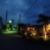 渡嘉敷島おまけ編③☆☆島でのお食事の記事に添付されている画像