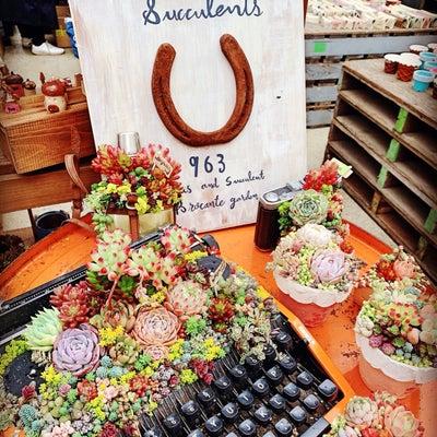 ◆全国から素敵なリメ缶リメ鉢が集結したイベントへ〜!!!の記事に添付されている画像