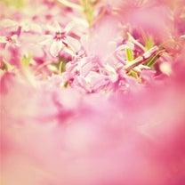 ☆アロマハンドファブで一皮むけてキラキラ輝かれていました☆の記事に添付されている画像