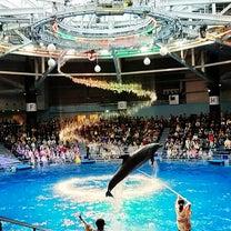 10m27d 水族館デビューの記事に添付されている画像