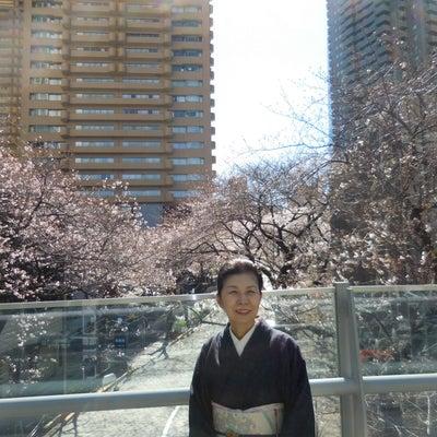 2019年3月24日の着物姿 My days with Kimonoの記事に添付されている画像