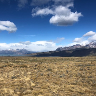 エルチャルテンからエルカラファテへ!!!最安値の宿と氷河トレッキング探し♫♫♫の記事に添付されている画像