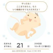 37w0d 正産期突入☆ & パパママクラスの記事に添付されている画像
