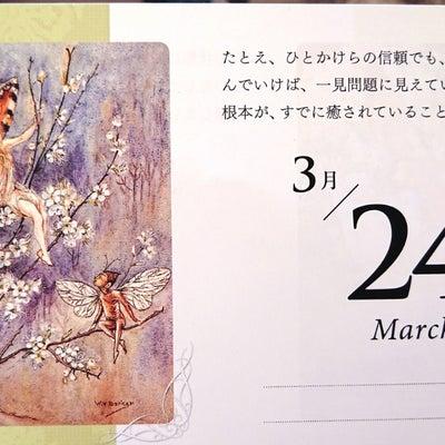 ∞3月24日【今日のエンジェルメッセージ☆】∞の記事に添付されている画像