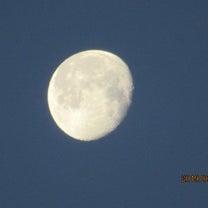 朝の月の記事に添付されている画像