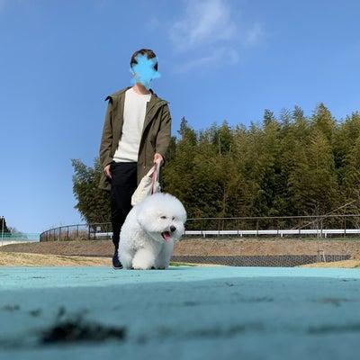 にぃに同行ビショントリミング★成田山へお礼参りの記事に添付されている画像