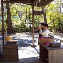 鎌倉♡蚤の市 「神様に守られた1日」の記事に添付されている画像