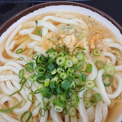 高松~高知(四国旅行四日目)の記事に添付されている画像