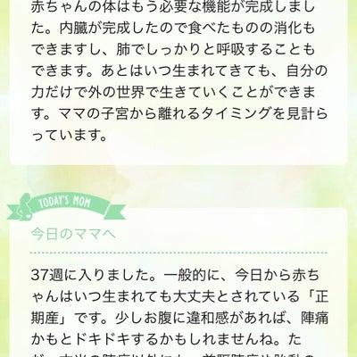 ついに正期産♡37w0d♡の記事に添付されている画像