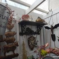 DIY新しいお部屋探検と薔薇みたいなコーカサスキリンソウの記事に添付されている画像