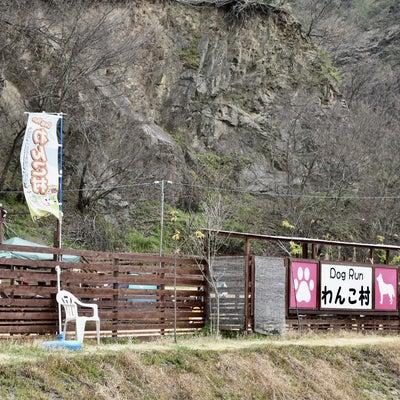 第2回 ダックス大オフ会in岡山わんこ村 その1の記事に添付されている画像