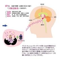 """香りと記憶と感情と""""ブライトセッション""""☆の記事に添付されている画像"""