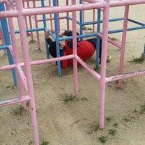 公園遊びの記事に添付されている画像