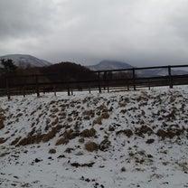 冷たい雨・・(*´з`)の記事に添付されている画像