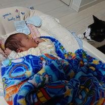 出産レポ①の記事に添付されている画像