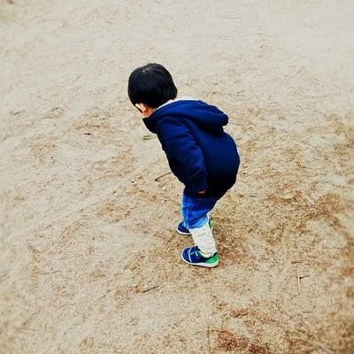 2歳4ヶ月25日 プレ幼稚園の入会決めたの記事に添付されている画像