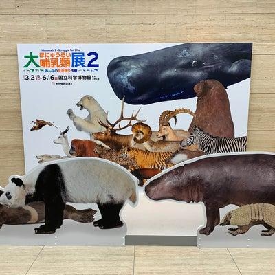 大哺乳類展など_6歳0ヶ月&2歳11ヶ月の記事に添付されている画像