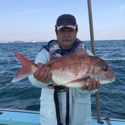 25日。ひとつテンヤ真鯛の釣果‼︎の記事に添付されている画像