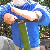 竹の奥深さを知るの記事に添付されている画像