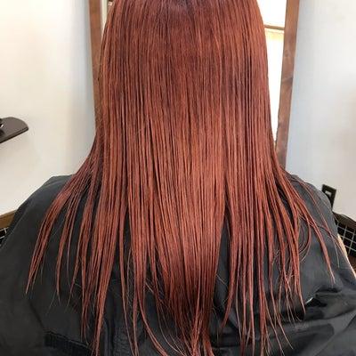無茶難題シリーズ!赤くなった髪をベージュにするぜ!の記事に添付されている画像