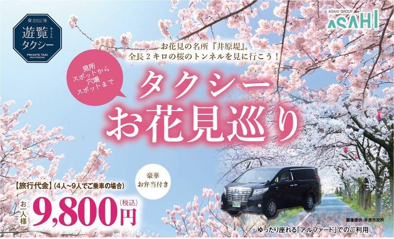 桜の名所「井原堤」で穴場お花見