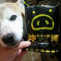 沖縄あぐー豚の記事に添付されている画像