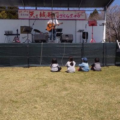 桜祭りの記事に添付されている画像