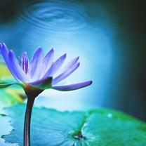 あなただけのスピリチュアルメッセージ「優しさにつつまれていると気づくよ」の記事に添付されている画像