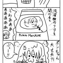 【タンスの中のポンちゃん】第9着の記事に添付されている画像