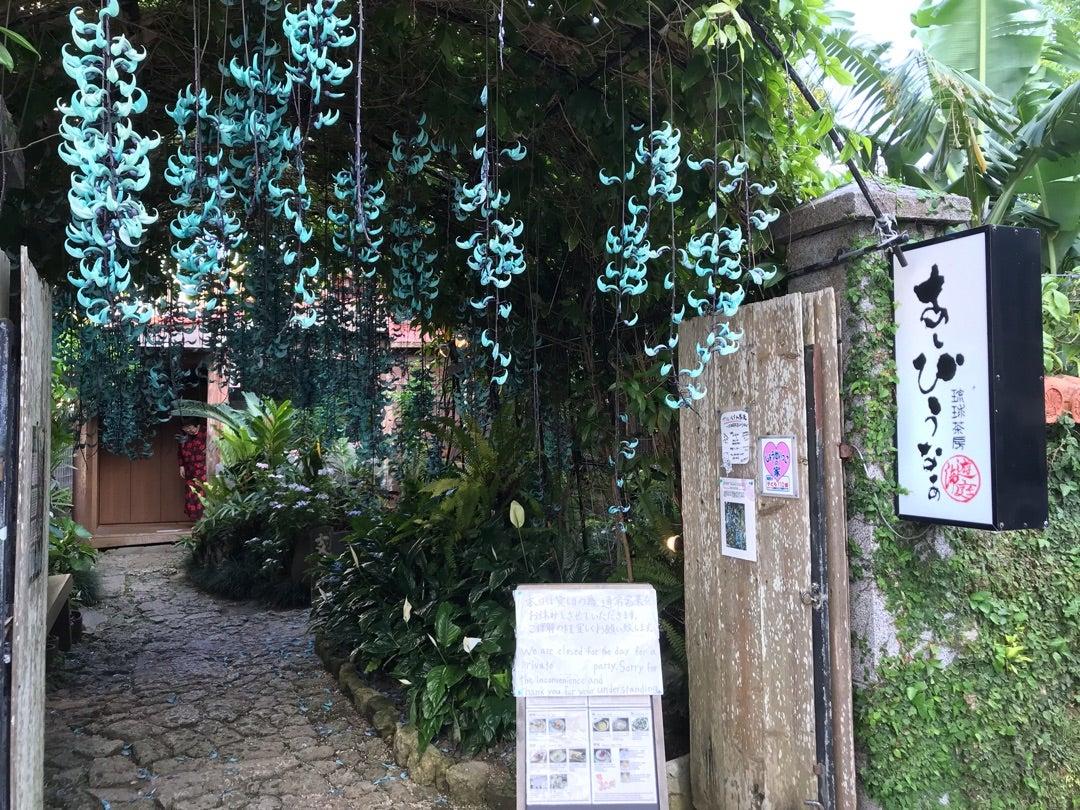 JPOPS(日本骨盤臓器脱手術学会)in Okinawaの記事より