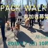 2019.4.7 (日)PACK WALK〜53〜参加者募集中❗️の画像