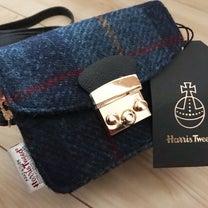 【しまむら購入品】ハリスツイードミニバッグ・アクセポーチお値段二度見の300円!の記事に添付されている画像