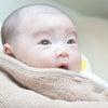 産後のポーセラーツレッスン♡の画像