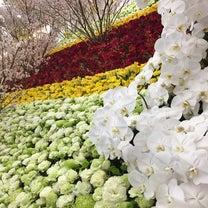 完成 一万本の花で告別式を‼️の記事に添付されている画像