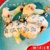 食べ痩せ食【カリフラワー】をジャンキーに食べてみたらの画像