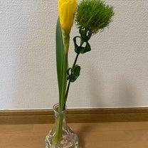 12w3d ♡ お花の記事に添付されている画像