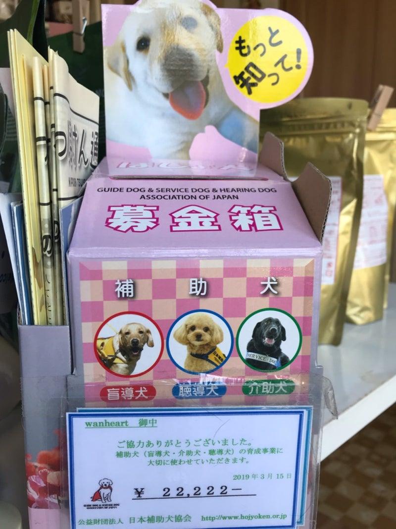 協会 犬 日本 補助 盲導犬受け入れ拒否対応事例集
