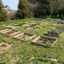 古賀ハーブ農園日記  除草作業!!の記事に添付されている画像