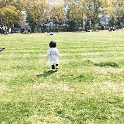 芝生の公園 & 孫大好きなおじいさんの記事に添付されている画像
