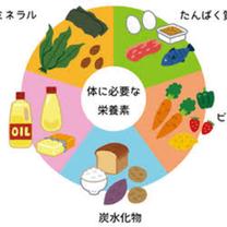 微量栄養素【ビタミン】の記事に添付されている画像