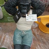 大阪杯は社台運動会。の記事に添付されている画像