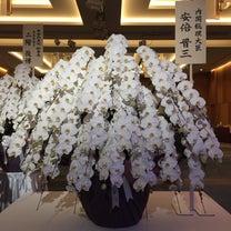 内閣総理大臣 安倍晋三からの胡蝶蘭が‼️の記事に添付されている画像