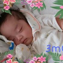 生後3ヵ月の記事に添付されている画像