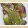 山菜の王様!?大人の味わいを感じる『タラの芽』の画像