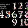 セラピストのための「数字」のハナシの画像