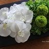胡蝶蘭が優雅で素敵なテーブルアレンジの画像